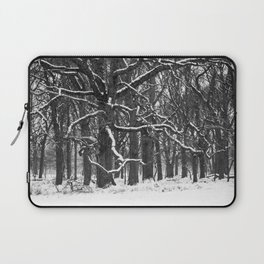 Tree in the winter (RR 272) Laptop Sleeve