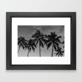 Hawaiian Palms Framed Art Print