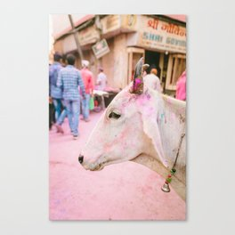 INDIA 26 Canvas Print