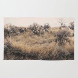 Walkabout Rug