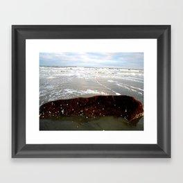 Sea Rock Framed Art Print