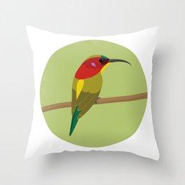 Handsome Sunbird Throw Pillow
