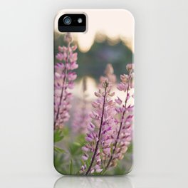 Summer eve by the lake iPhone Case