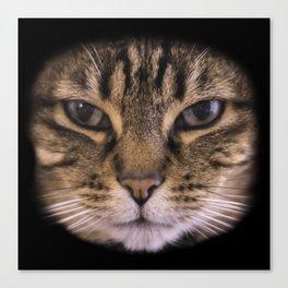 Enter the Catface Canvas Print