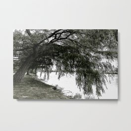 Weeping Willow on the Water Metal Print
