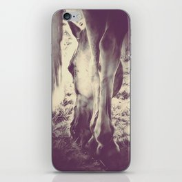 Horseshoes by GEN Z iPhone Skin