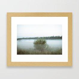Misty field 5/5 Framed Art Print