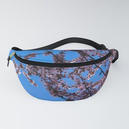 South Portland Spring 2018 (1) Fanny Pack