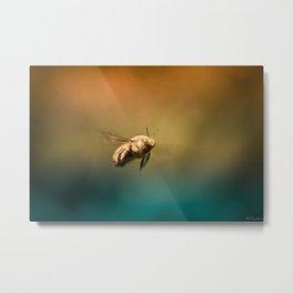 Little Bee Wanderer - Macro Photography Metal Print