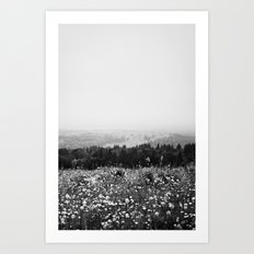 Mountain Wildflowers Art Print