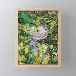 Hidden in the Leaves Framed Mini Art Print