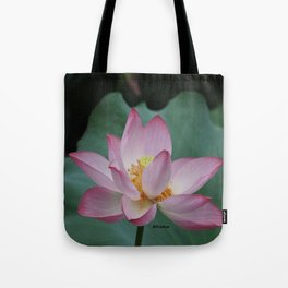 Hangzhou Lotus Tote Bag