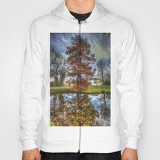 Tree reflection Hoody
