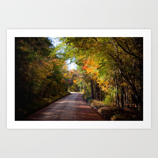 Shady Lane in the Fall Art Print