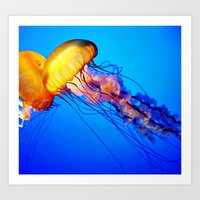 jelly fish Art Prints featuring Jelly Fish by Amanda Creek Creative