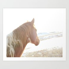 Sun + Horse Art Print