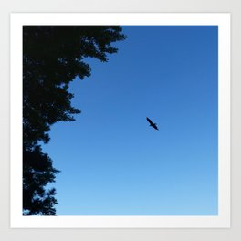 Eagle Silhouette // Nature Photography Art Print