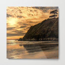 Sunset Pine Metal Print