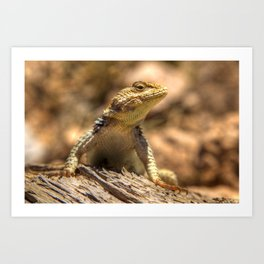Ready For His Close Up Art Print