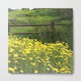 Lake Murray, La Mesa, California Metal Print