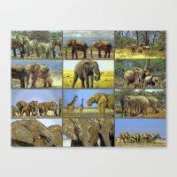 wildlife Canvas Prints featuring Wildlife by Karl-Heinz Lüpke