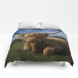 Rugged Highland Cow Comforters
