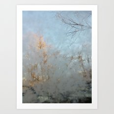 Frost Touch Art Print