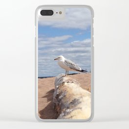 Lake Superior in Spring Clear iPhone Case