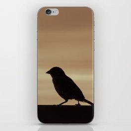 Bird! iPhone Skin
