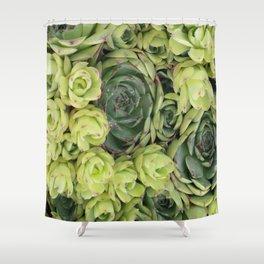 Mint green botanical succulent floral cactus Shower Curtain