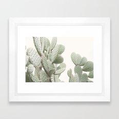 Cactus 4 Framed Art Print