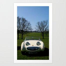 Frogeye in the Sunshine Art Print