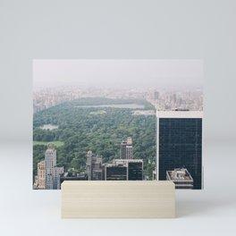 Central Park in NYC Mini Art Print
