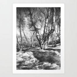 Musing of Trees Art Print