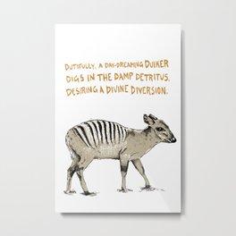 D is for Detritus - Zebra Duiker on White Metal Print