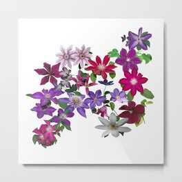 Cascade of Clematis I Metal Print