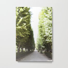 The Garden Paths in France Metal Print