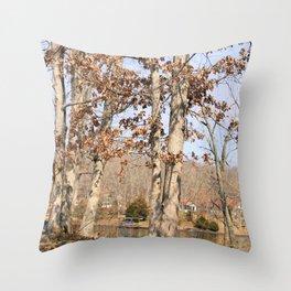 Hidden Lake Shore - Shelbyville, IL Throw Pillow