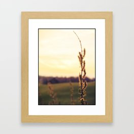 Breaking Light I Framed Art Print