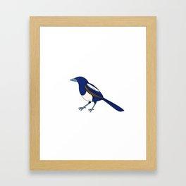 Gazzaladra Framed Art Print