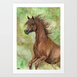 Chestnut arabian horse Art Print
