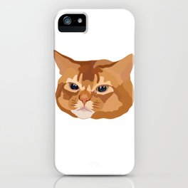 Orange Tabby Cat iPhone Case