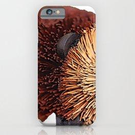 Hedgehog Body Mammal Merch spiny Plywood Wood Glued iPhone Case