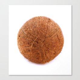 cocos Canvas Print