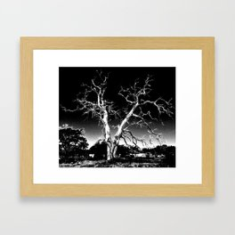 Biloxi Tree Framed Art Print
