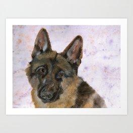 Portrait of a German Shepherd Art Print