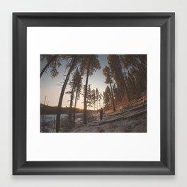 Warm Sun Framed Art Print