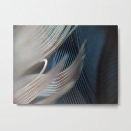 Steller Metal Print
