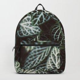 Botanical Gardens Zebra Leaf #398 Backpack
