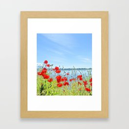 Red poppies in the lakeshore Framed Art Print